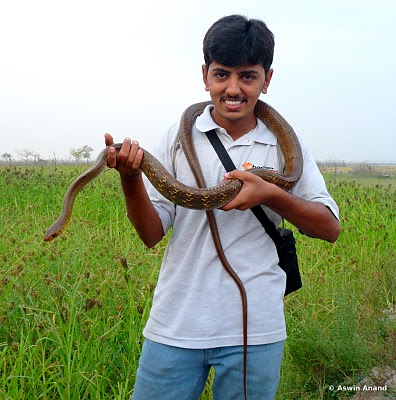 Rat Snake and Me :D