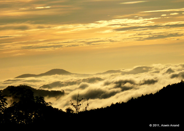 A surreal sunrise at Yercaud
